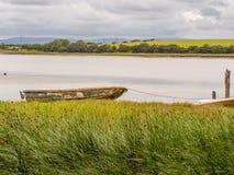 Wyre de rivière Photo libre de droits