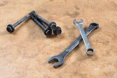 Wyrwanie i śruba Fotografia Stock