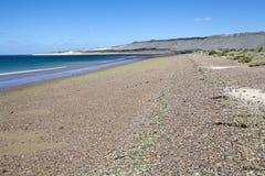 Wyrzucać na brzeg blisko Puerto Madryn, miasto w Chubut prowinci, Patagonia, Argentyna zdjęcia stock