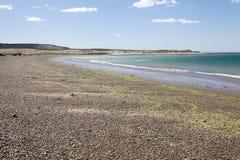 Wyrzucać na brzeg blisko Puerto Madryn, miasto w Chubut prowinci, Patagonia, Argentyna zdjęcie stock