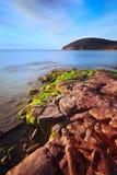 wyrzucać na brzeg Cala morza śródziemnomorskiego Tuscan violina Zdjęcia Stock