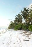 Wyrzucać na brzeg na Mahe wyspie fotografia royalty free