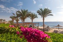 Wyrzucać na brzeg przy luksusowym hotelem, sharm el sheikh, Egipt obrazy stock