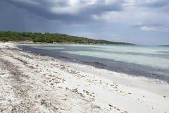 Wyrzucać na brzeg w Sardinia przed burzą, Włochy Zdjęcia Stock