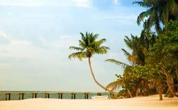 Wyrzucać na brzeg z molem i drzewkami palmowymi na Atlantyk wybrzeżu Zdjęcie Stock