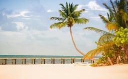 Wyrzucać na brzeg z molem i drzewkami palmowymi na Atlantyk wybrzeżu Zdjęcia Royalty Free