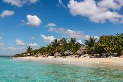 Wyrzucać na brzeg z trzcinowymi parasolami na wyspie w republice dominikańskiej fotografia royalty free