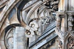 wysklepia gothic Obraz Stock
