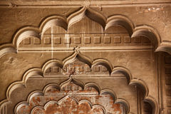 wysklepia hindusa Obraz Royalty Free