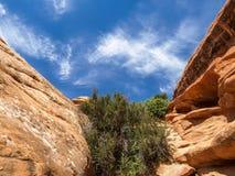 Wysklepia park narodowy, Utah, usa Zdjęcie Royalty Free
