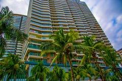 Wysocy drapacze chmur, przejścia i piękni drzewka palmowe, Drzewka palmowe zasadzający wzdłuż drogi zwrotniki Fotografia Royalty Free