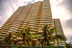 Wysocy drapacze chmur, przejścia i piękni drzewka palmowe, Drzewka palmowe zasadzający wzdłuż drogi zwrotniki Zdjęcia Stock