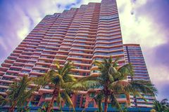 Wysocy drapacze chmur, przejścia i piękni drzewka palmowe, Drzewka palmowe zasadzający wzdłuż drogi zwrotniki Obraz Royalty Free