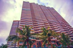 Wysocy drapacze chmur, przejścia i piękni drzewka palmowe, Drzewka palmowe zasadzający wzdłuż drogi zwrotniki Zdjęcia Royalty Free