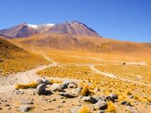 Wysocy szczyty i typowe traw kępy w Cordillera De Lipez, Andyjski Altiplano, Boliwia, Ameryka Południowa Zdjęcia Stock