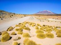 Wysocy szczyty i typowe traw kępy w Cordillera De Lipez, Andyjski Altiplano, Boliwia, Ameryka Południowa Obrazy Stock