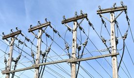 Wysocy woltaż linii energetycznych serw miejscowego sąsiedztwa fotografia stock