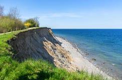 Wysoka brzegowa faleza przy morzem bałtyckim w wiośnie Zdjęcia Royalty Free