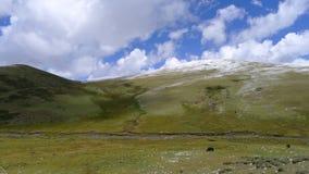 Wysoka góra obszary trawiaści na Tybetańskim plateau, Chiny Zdjęcia Stock