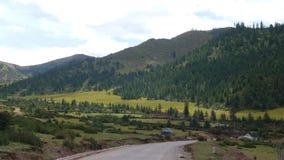 Wysoka góra obszary trawiaści No.318 na Tybetańskim plateau i krajowa droga Zdjęcia Royalty Free