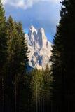 Wysoka góra szczegół Fotografia Stock
