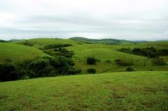 Wysoka góra tropikalny las z chmurami przechodzi w India fotografia stock