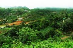 Wysoka góra tropikalny las z chmurami przechodzi w India fotografia royalty free