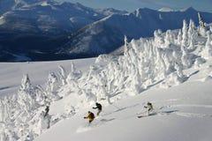 wysoka na nartach Zdjęcia Stock
