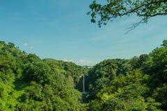 Wysoka siklawa po środku zielonego lasu obraz stock