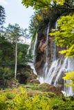 Wysoka siklawa w lasowym Plitvice, park narodowy, Chorwacja obrazy stock