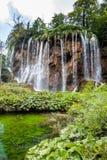 Wysoka siklawa w lasowym Plitvice, park narodowy, Chorwacja obrazy royalty free