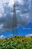Wysoka woltaż elektryczności przekazu linia i wierza w ryżu polu Zdjęcia Royalty Free