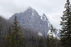 Wysoki Alpejski Vista Obraz Stock