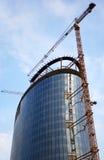 wysoki budowa wzrost Zdjęcia Royalty Free