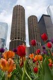 wysoki budynku wzrost Obrazy Royalty Free