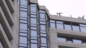 wysoki budynku wzrost zbiory wideo