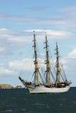 Wysoki Dublin Statek ściga się 2012 Fotografia Royalty Free