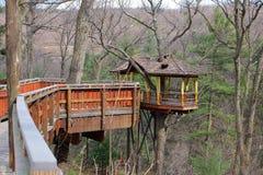 Wysoki elewaci domek na drzewie Obraz Royalty Free