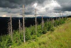 Wysoki Grzbiet in de Jizera-Bergen Stock Afbeelding