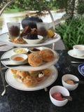 Wysoki herbaty Chiang Mai Zdjęcia Royalty Free
