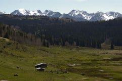 Wysoki kraj krowy obóz Obraz Stock