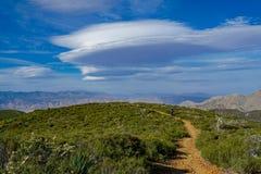 Wysoki pustynia talerz z wycieczkować mężczyzny i zielonych rośliien zdjęcia royalty free