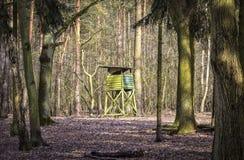 Wysoki siedzenie dla myśliwych stojaków w lesie Fotografia Stock