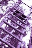 Wysoki siedzenie w lesie Obrazy Royalty Free