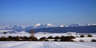Wysoki Tatras Zdjęcia Royalty Free