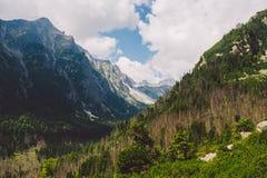 Wysoki Tatras w Sistani w lecie, widok góry, domowe góry w tle Fotografia Stock