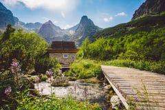 Wysoki Tatras w Sistani w lecie, widok góry, domowe góry w tle Zdjęcia Royalty Free