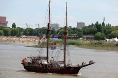 2016 Wysokich statków ras, Antwerp Belgia Zdjęcia Royalty Free