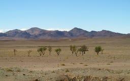 Wysokie góry i pustynny widok Obraz Stock