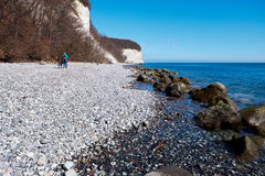 Wysokie kredowe falezy przy wybrzeżem Rugen wyspa Niemcy Fotografia Royalty Free